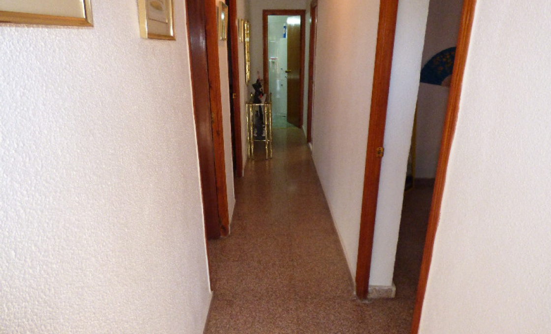 3 Chambres, Finca, À Vendre, calle de san francisco de Asis, 1 Salles de bain, Listing ID 1523, La Marina, Espagne, 03177,